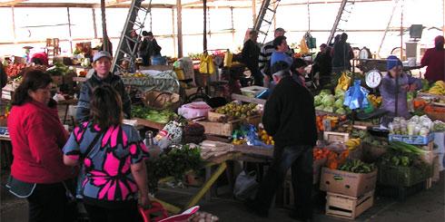 LAJINO.CL es LAJA en Internet // Vega de Laja se traslada a carpa municipal, por construcción del Mercado