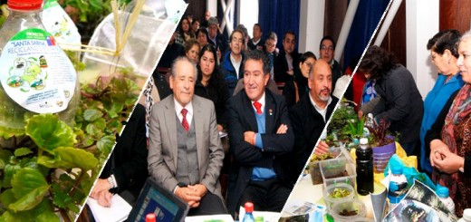 Diversas iniciativas Medio Ambientales fueron presentadas en Laja