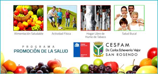 Cesfam San Rosendo / Promoción de la Salud