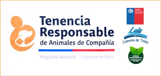 Campaña Tenencia Responsable / Laja