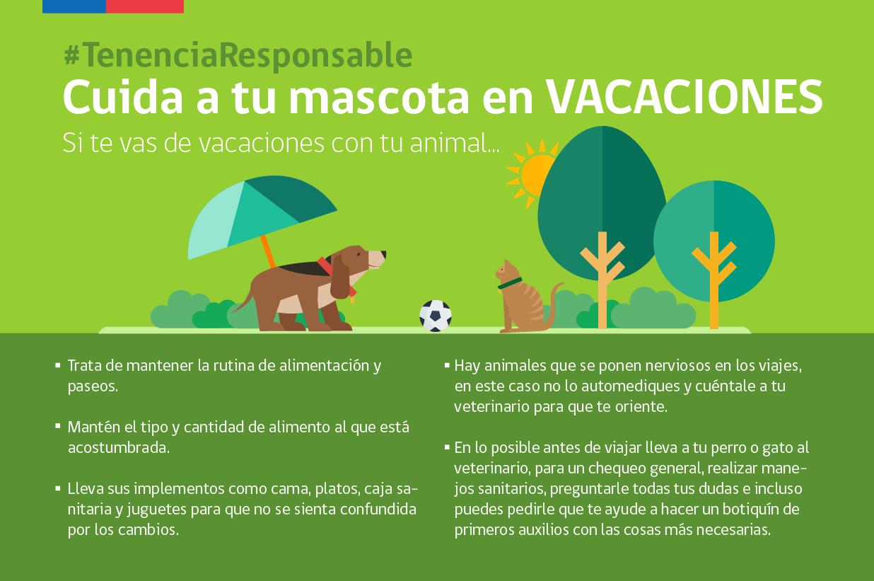 Consejos de tenencia responsable y cuidado de mascotas en vacaciones