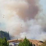 Incendio Forestal / San Rosendo