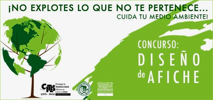 Estudiante lajino gana Concurso de Afiches Ecológicos organizado por Museo Histórico Carabineros de Chile