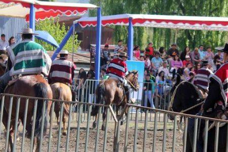 Actividades ecuestres marcan Día del Campesino en sector Polideportivo