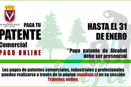 Plazo de pago patentes comerciales año 2017