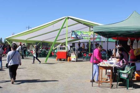 En sector Curaco Las Toscas se desarrolló segunda versión Fiesta de la Vendimia